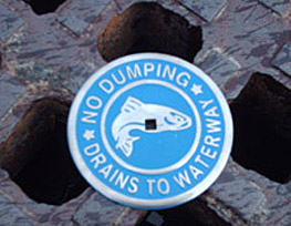 """No Dumping"" marker installed on storm drain"