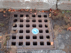 Storm drain with marker